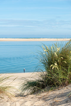 BASSIN D'ARCACHON (France), le banc d'Arguin et la plage du Petit Nice