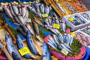 Foto op Canvas Paradijsvogel ISTANBUL, TURKEY - APRIL 04, 2019: Fish presented for sale at the fish market near Galata Bridge called Karakoy Balik Pasari. A fish store with variety of fishes and sellers in public market.