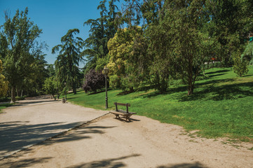 Dirt pathway passing through trees in a garden of Madrid