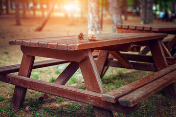 wooden picnic tables and pine cones in public park