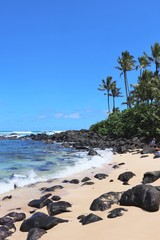 Beautiful beach area on the North Shore in Hawaii;