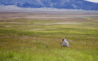 Photographer in a Meadow