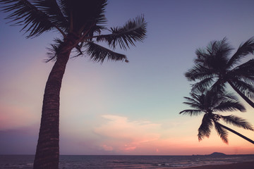 Fotomurales - Silhouette of tropical beach during sunset twilight. seascape of summer beach and palm tree at sunset. vintage color tone