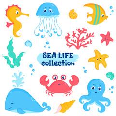 Sea animals and plants elements. Cute vector set.
