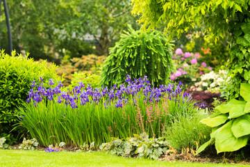 Piknęy ogród latem