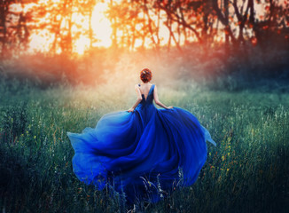 princess, with a elegant hairstyle, runs through a forest meadow to meet a fiery sunset with a haze. A luxurious blue dress with a long train flutters in the wind. Photo from the back without a face.