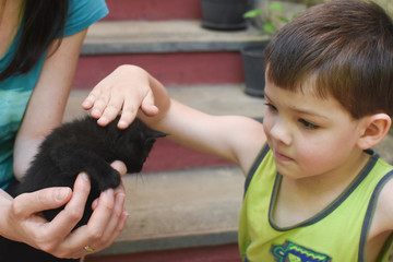 Adorable little boy and small black kitten. Child first time cuddle little kitty
