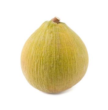 Santol fruit isolated on the white background