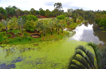 Beerwah, Australia - Apr 22, 2019. Bindi's Island is a three-story treehouse built around a replica fig tree. It offers panoramic views of Australia Zoo. View from the treehouse lookout.