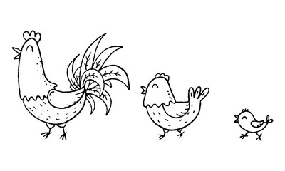 Colorful cartoon chicken family, outline vector illustration
