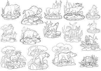 wild animals coloring book image set