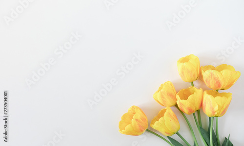 Beautiful composition of spring flowers. Yellow tulips flowers on white background. Valentine's Day, Easter, Birthday, Happy Women's Day, Mother's Day. Flat lay, top view, copy space