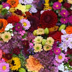 Herbstblumen, Blumenwand