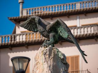 Alder in Alcudia