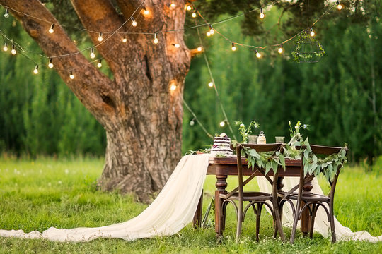 Wedding banquet in the field at the pine tree. Chairs and honeymooners table decorated, served with cutlery and crockery and covered with a tablecloth