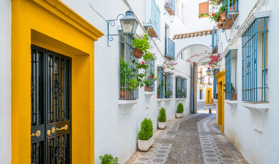 Scenic sight in the picturesque Cordoba jewish quarter. Andalusia, Spain.