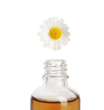 Essential oil dripping from chamomile petal into glass bottle on white background