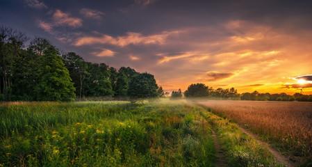 Sunset Fototapete