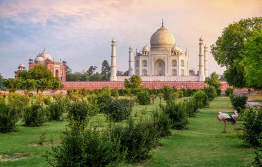 Wall Mural - Taj Mahal historic monument at sunset as seen from Mehtab Bagh at Agra, India