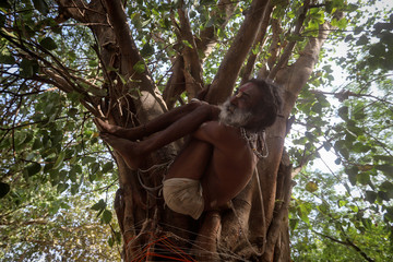 A Sadhu or Hindu holy man performs yoga on a tree ahead of International Yoga Day on the banks of the river Ganges in Prayagraj