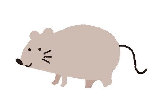 ネズミ イラスト