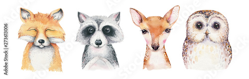 Wall mural Watercolor set of forest cartoon isolated cute baby fox, deer, raccoon and owl animal with flowers. Nursery woodland illustration. Bohemian boho drawing for nursery poster, pattern