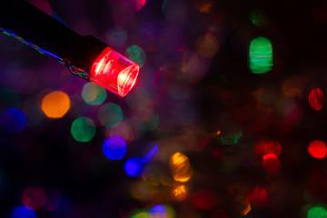 Christmas fairy light