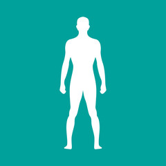 Human body outline in white. Vector illustration