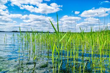 Über den Krakower See in Mecklenburg Vorpommern