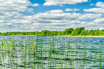 Auf dem Krakower See in Mecklenburg Vorpommern