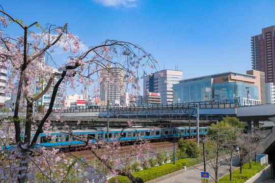 川口駅と街並み 春