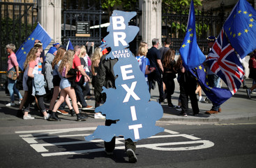 A pro-Brexit supporter is seen outside Parliament in London