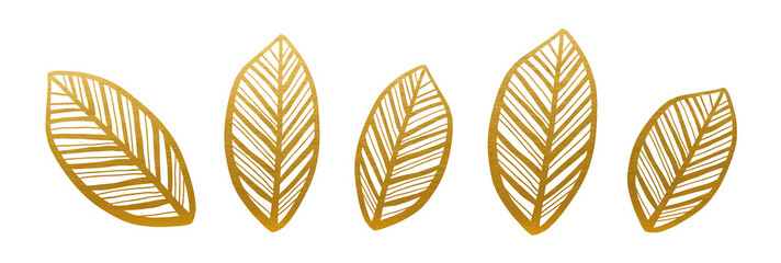 Golden Leaves Set. Nature Decoration Elements. Vector.