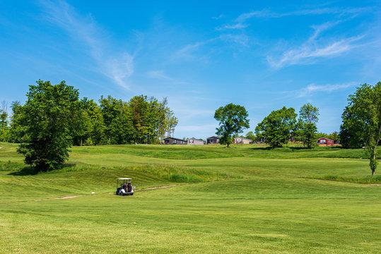 Golfers in a golf cart