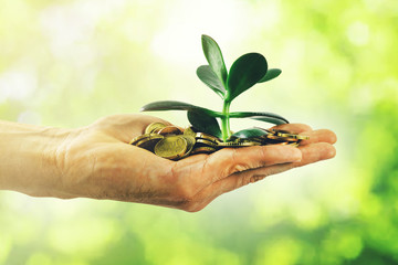 money growth and investment concept. hand with coins and small plant