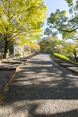 福岡城 本丸への石段