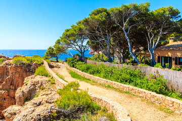 Fototapete - Trekking path along seacoast from Cala Aigua to Cala Marquesa, Costa Brava, Spain