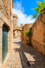 Wall Mural - Narrow street and castle gate in historic old town of Tossa de Mar, Costa Brava, Spain