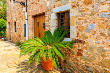 Wall Mural - Green tropical plant and stone house in old town of Tossa de Mar, Costa Brava, Spain