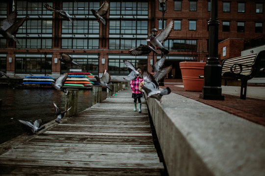 Little girl walking on dock while pigeons fly across her path