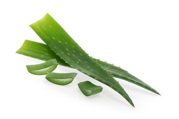 Aloe vera isolated white background