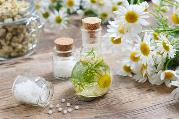 Daisy infusion bottle, Chamomile flowers, bottles of homeopathic globules and glass jar of dry daisies.