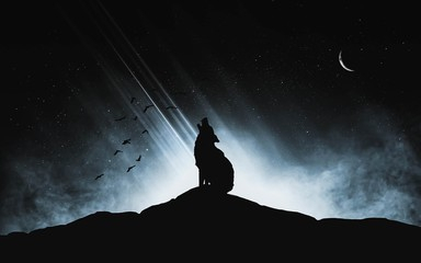 A silhouette of a wolf howling at the moon on a dark hill with a light source in the background