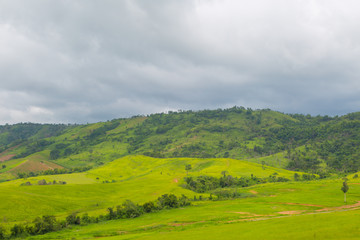 Poster Hill Green Mountains Landscape with Grass