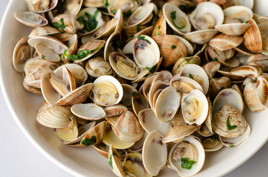Traditional italian seafood dish with steamed clams. Mediterranean food concept. Close-up