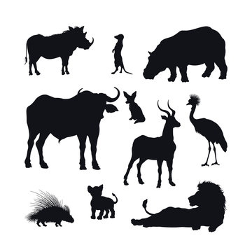 Black silhouette of african animals on white background. Isolated icon of lion, buffalo and gazelle. Wildlife of Africa. Savannah nature