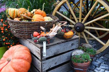 Bauernhof, Wochenmarkt, Herbst