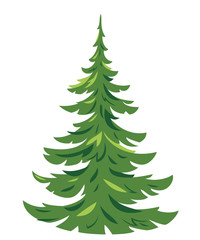 One green young spruce tree illustration in a simple colors, young conifer plant in side view isolated