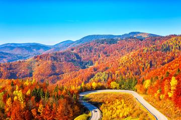 Obraz Scenic alpine winding road in autumn mountains with colorful trees and blue sky, outdoor travel background, Narodny park Slovensky Raj (National park Slovak paradise), Slovakia (Slovensko) - fototapety do salonu