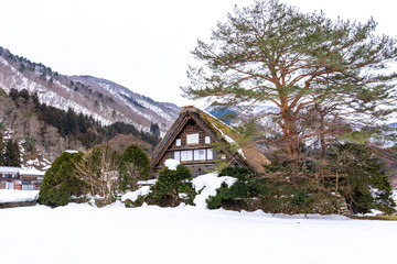 Wall Mural - Winter season at Shirakawa-go village, Gifu, Japan